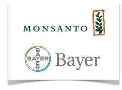 Monsanto And Bayer Engage In Forced Child Labor